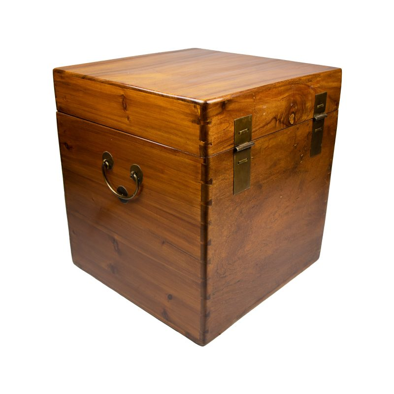 Chinese Camphor Trunk