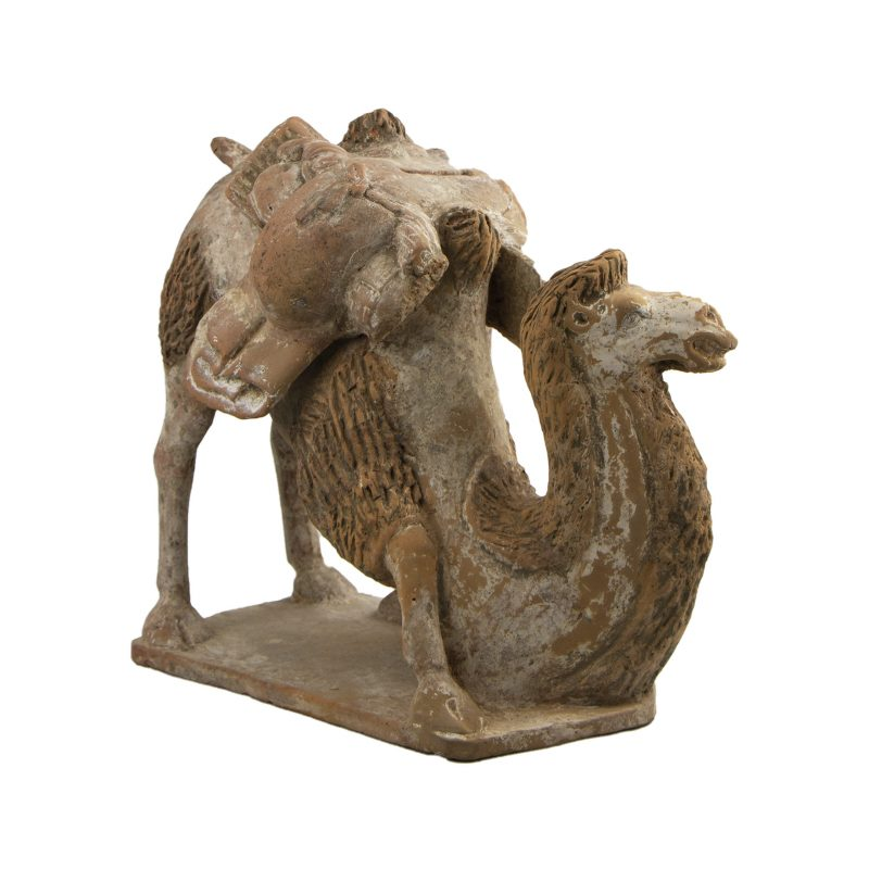 Chinese Terra Cotta of a Northern Qi Kneeling Camel Figure